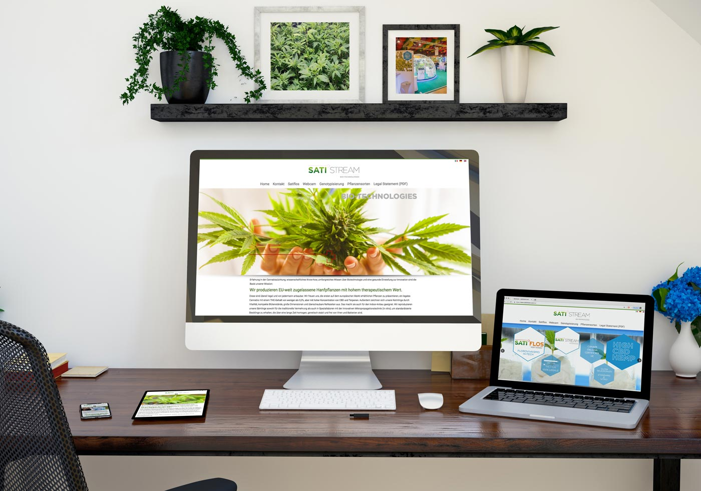 Webdesign aus Graz von Dieter Biernat, satistream.com